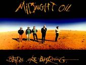 Midnight Oil Beds Are Burning